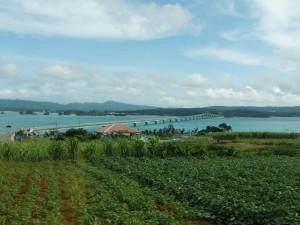 古宇利島周回路から見た古宇利大橋